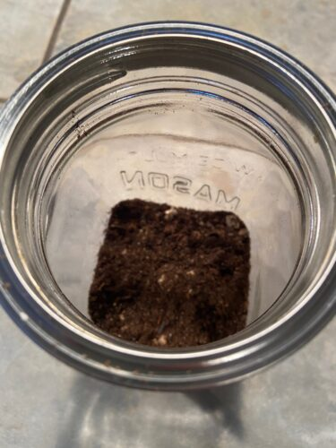 Upcycled Mason Jar Terrarium - 5