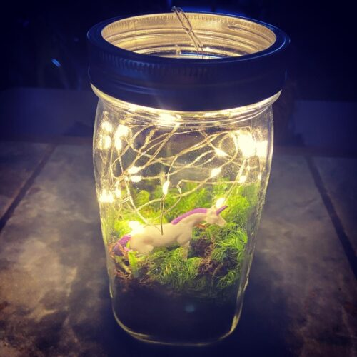Upcycled Mason Jar Terrarium - Final