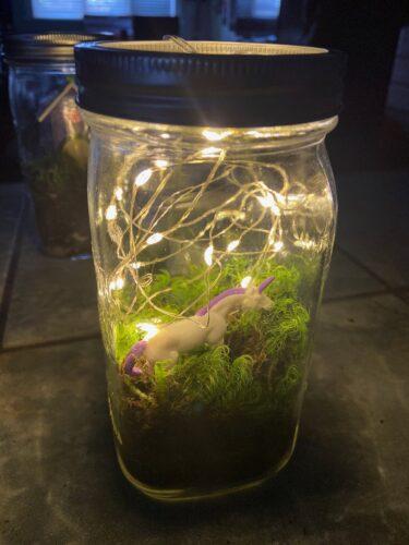 Upcycled Mason Jar Terrarium - 8
