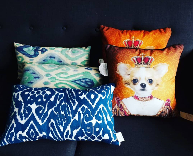 Thrifted blue zebra print pillow with teal pillow set behind and bright orange dog pillow set beside