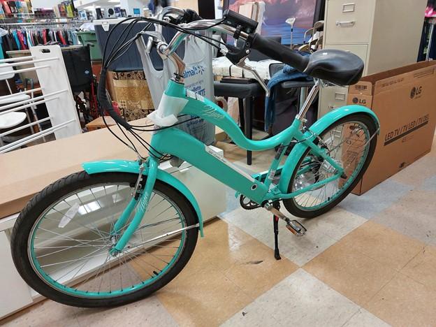 Thrifted vintage bike cruiser